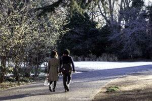 公園の中を歩く男女を尾行する